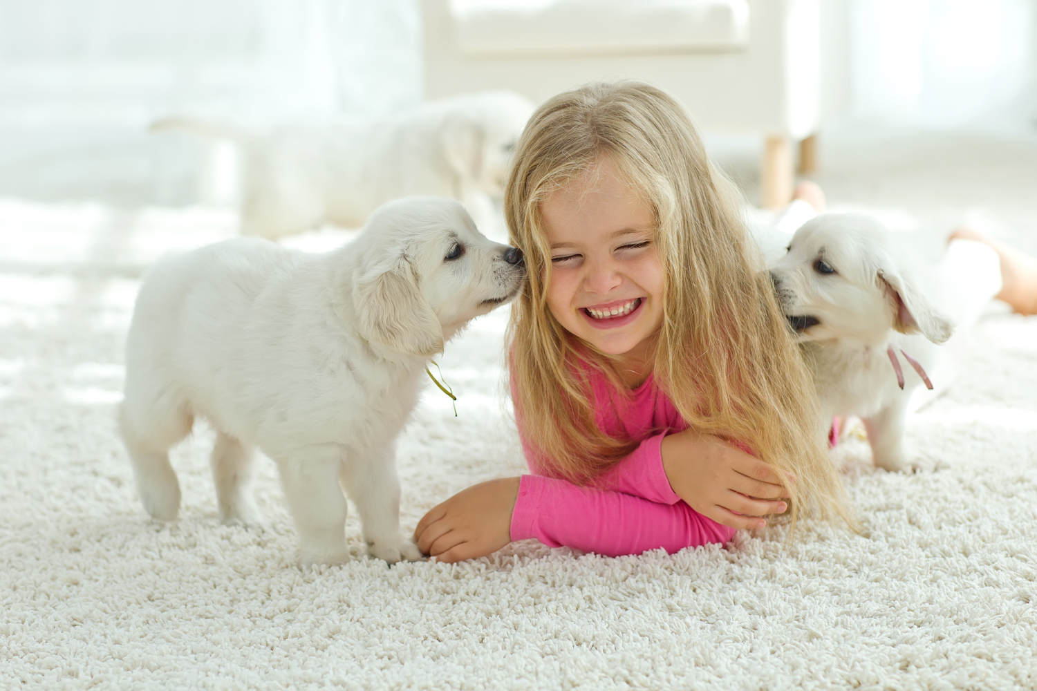 One Minute Dry Time carpet cleaning is safe for families and pets. We also provide upholstery and oriental rug cleaning