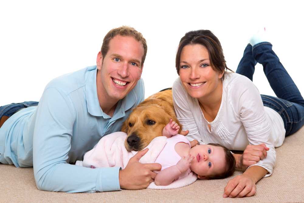 One Minute Dry Time Uses Safe Disinfectants to clean your floors. Safe for the whole family (shown on carpet with baby and dog)